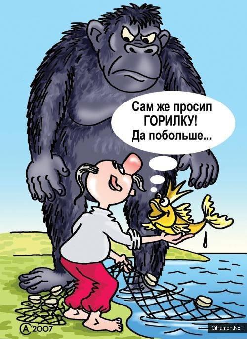 Андрей Саенко - Горилка