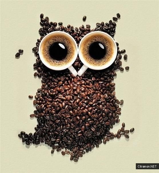 Кофе-сова
