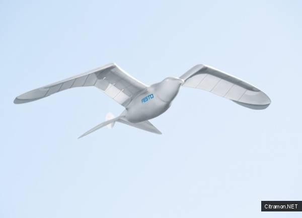 Робот птица