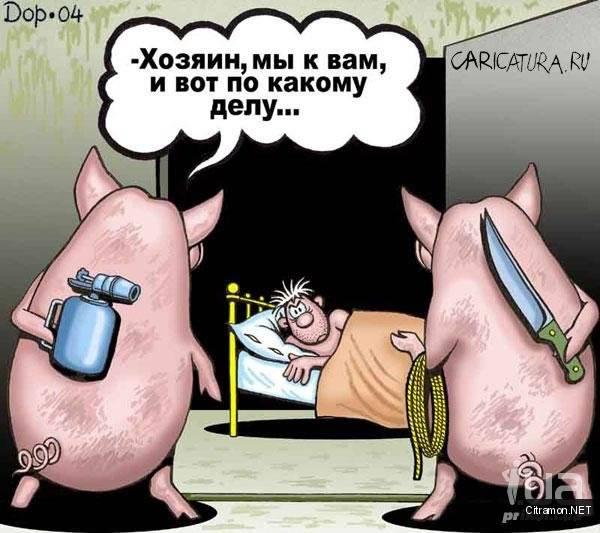 Сально-свиная революция