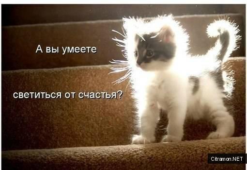 А Вы умеете светиться от счастья?!!