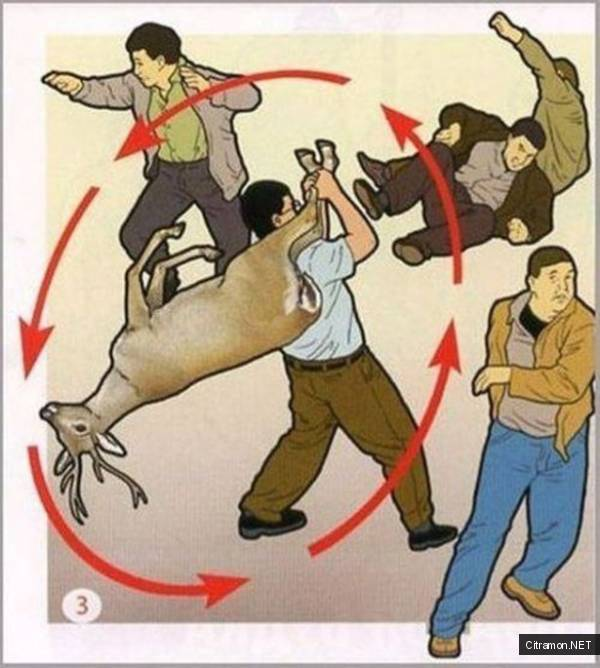 Как с помощью оленя победить в бою
