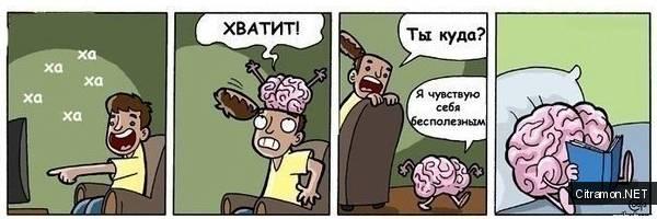 Мозг сказал хватит
