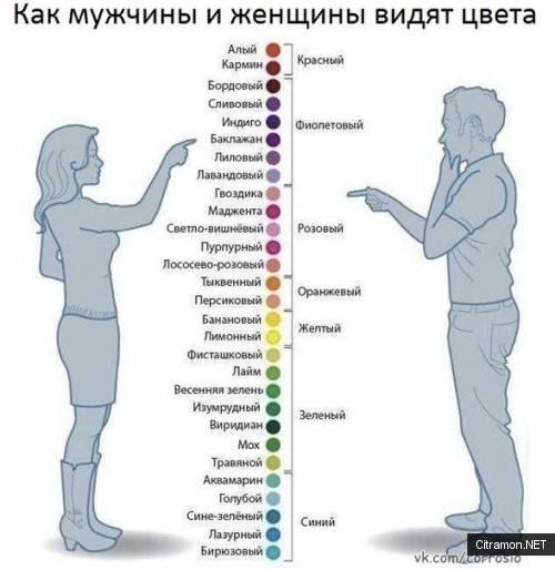 Цветовое восприятие мужчин и женщин