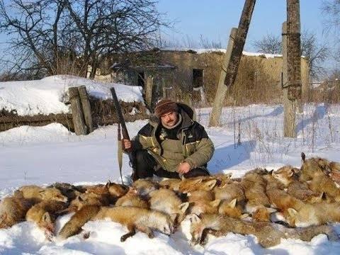 Охотник на лис