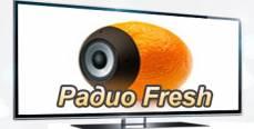 """Онлайн радио """"FRESH"""""""
