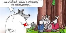 Тайный смысл русских пословиц и поговорок