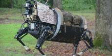 Роботы-звери восстанут против человека